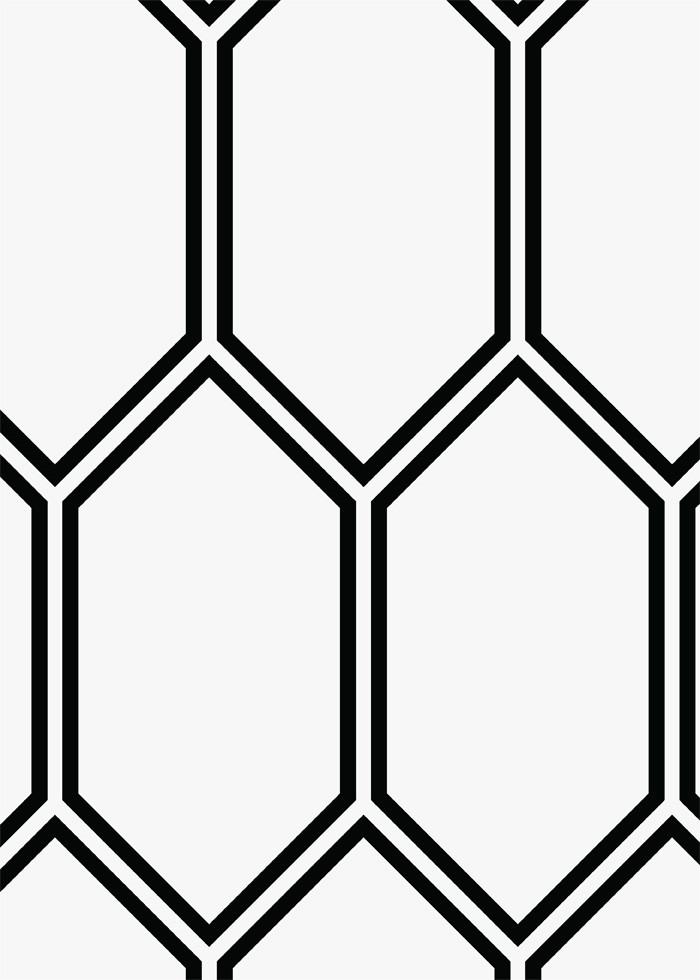 Large scale picket hexagon flooring old world spanish